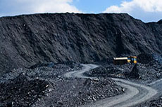 US-based coal miner, Peabody Energy, has reported better than expected full year results for 2009