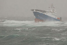 Capesize coal vessel sinks off South Africa's east coast