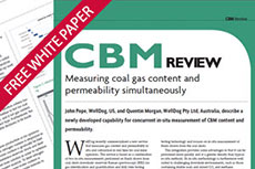 Measuring coal gas content and permeability simultaneously